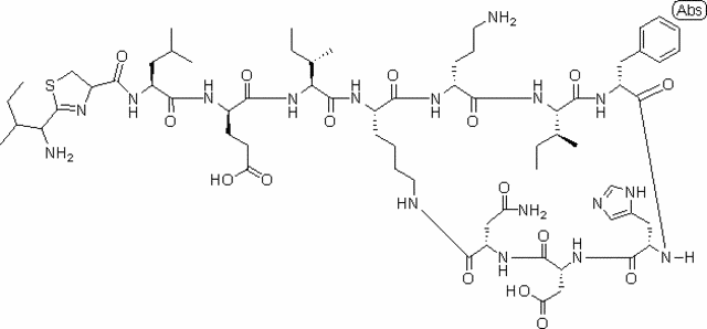 Bacitracin 50,000 Units in vial