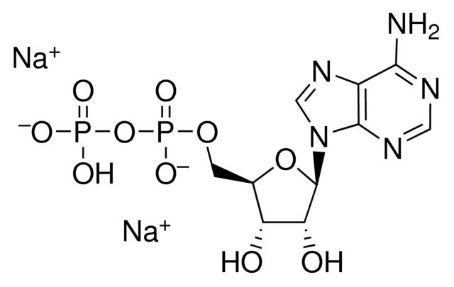 Adenosine-5-Diphosphate Disodium Salt (ADP-Na2)