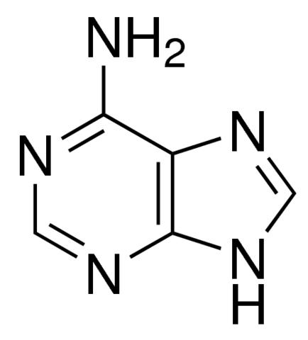 Adenine (6-Aminopurine; Vitamin B4) Plant Culture Tested